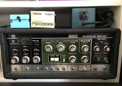 Roland RE301 for sale