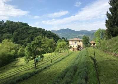 To let in Northern Italy: Residential studio with Steinway Model D