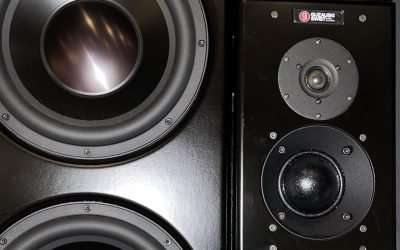 Guzauski Swist GS4A (Pair) Studio Monitors For Sale